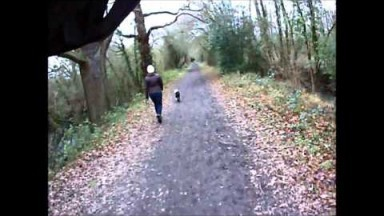 Tonbridge to Penshurst Cycle Trail Feb 2015